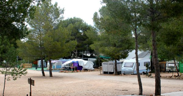 parcelas alquiler camping